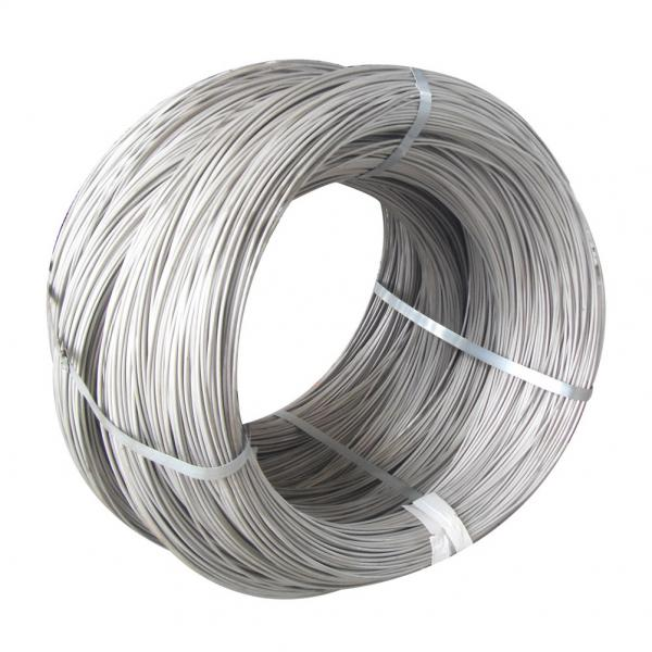 Stainless Steel Wire | Portfolio categories | Zhejiang Skyrit Metal ...